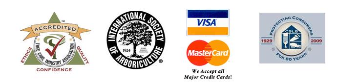 accredited arborist